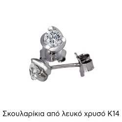 Σκουλαρίκια Κ14 με Ζιργκόν 018854